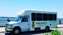 Charleston City Sightseeing Tour via Bus, Charleston, City Tours