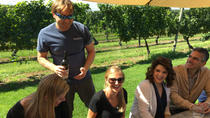 Long Island Wine Tour from NYC - Day Trip: Meet the Winemakers, Taste Food and Wine, New York City, ...