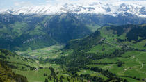 Mount Stanserhorn tour with personal guide and private driver including all tickets, Lucerne