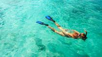 St Thomas Snorkeling Cruise to Buck Island, St Thomas, Private Sightseeing Tours