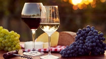 2 Winery in 1 Day The Best Experience, Tbilisi, Wine Tasting & Winery Tours
