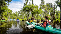 Manchac Magic Kayak Swamp Tour, New Orleans, Kayaking & Canoeing