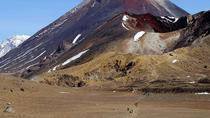 Tongariro Alpine Crossing Shuttle - One Way from Ketetahi Carpark NZ, Taupo, Airport & Ground ...