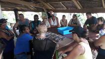 PORT VILA Day Tour: Chocolate Tour, Port Vila, Chocolate Tours