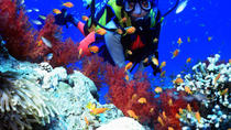 Full day Diving in Mombasa, Mombasa, Cultural Tours