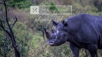 3 Days Maasai Mara Absolute Experience, Nairobi, Private Sightseeing Tours