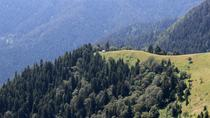 2-Day Hike in Borjomi-Kharagauli National Park, Tbilisi, Overnight Tours