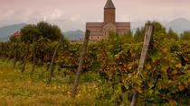 Private 1-Day Wine Tour to Kakheti:Telavi, Twins Winery, Kvareli & Tsinandali, Tbilisi, Private Day ...