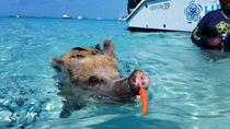 Private 60ft Luxury Yacht to Swimming Pigs Exuma Bahamas from Nassau, Nassau, Cultural Tours