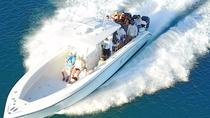 Private Famous Swimming Pigs Tour Bahamas - Full Day Powerboat to Exuma from Nassau, Nassau, ...