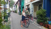 Small-group Singapore Highlights Bike Tour, Singapore, Private Sightseeing Tours
