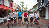 Small-Group Singapore Highlights Bike Tour , Singapore, Bike & Mountain Bike Tours