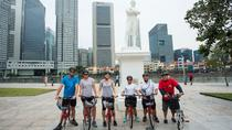 Total Singapore Tour - Ganztägige Biking, Walking und Food Tour, Singapore, Food Tours