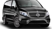 PRIVATE BUSINESS VAN CRUISE CENTRE TO SINGAPORE AIRPORT, Singapore, Bus & Minivan Tours