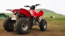 Escursione a St Kitts: ATV Adventure, St Kitts, Ports of Call Tours