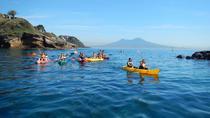 Wild Naples Kayak Experience, Naples, Kayaking & Canoeing