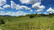 Educational Wine Tour & Tasting in Siena, Siena, Wine Tasting & Winery Tours