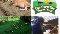 The Paradise Farm Tour & Organic Dinner, Monteverde, Cultural Tours