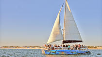 Sunset & Dolphin Catamaran Cruise in Panama City Beach, Panama City Beach, Sailing Trips