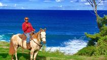 Maui Horseback-Waterfall and Ocean Tour, Maui, Horseback Riding