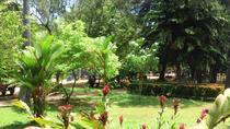 2-Day Yala National Park Safari Tour, Colombo, Multi-day Tours