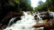 Hot Spots at Kanneliya Rainforest, Galle, Cultural Tours