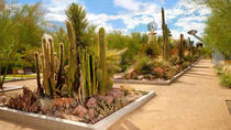 Springs Preserve Admission, Las Vegas, Adults-only Shows