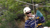 Zipline Canopy Tour, Cape Town, 4WD, ATV & Off-Road Tours
