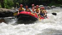 Bali Rafting, Rice Terrace, Volcano, Monkey Forest, Bali, Attraction Tickets