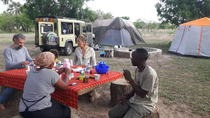 3 Days 2 Nights Mikumi National Park Camping Safari, Dar es Salaam, Hiking & Camping