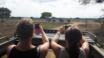 DAY TRIP TO MIKUMI NATIONAL PARK FROM DAR ES SALAAM, Dar es Salaam, Day Trips