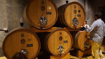 Amarone Wine-Tasting Tour with Lunch from Verona, Verona, Wine Tasting & Winery Tours