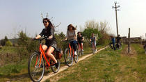 Tour in bicicletta elettrica nelle campagne dell'Amarone, Verona, Bike & Mountain Bike Tours