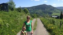 3-5 hours walking tour in Lillehammer area, Oslo, City Tours