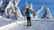 Guided cross-country skiing week in Lillehammer, 6 days, Oslo, 4WD, ATV & Off-Road Tours