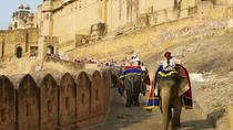 Jaipur Sightseeing with Lunch by Tuk Tuk Safari, Jaipur, Tuk Tuk Tours