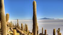 Uyuni Salt Flats Day Trip by Air from La Paz, La Paz