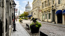 Ultimate Montreal Afternoon Tour - English, Montreal, Cultural Tours