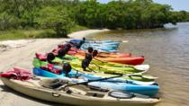 3 Hour Kayak Rental, Naples, Kayaking & Canoeing