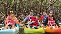 Mangrove Tunnel Kayak Tour, Naples, Kayaking & Canoeing