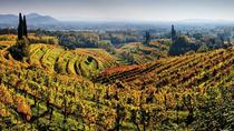 Friuli Venezia Giulia Insiders Wine Tour, Trieste, Wine Tasting & Winery Tours