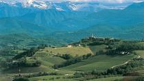 The Beauty and the Flavor of Friuli Venezia Giulia Collio Wine Tour, Trieste, Wine Tasting & Winery ...