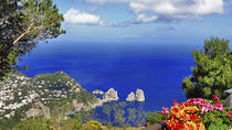 Capri and Anacapri Day Tour from Sorrento, Sorrento