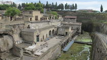 Half Day Morning Tour of Herculaneum from Sorrento, Sorrento, Ports of Call Tours