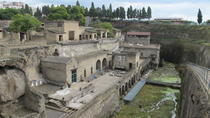 Half-Day Tour of Herculaneum from Sorrento with Private Driver, Sorrento, Private Sightseeing Tours
