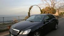 Private Transfer Naples Airport to Sorrento with English Speaking Driver and 2 Hours in Pompeii, ...