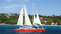 Barbados Catamaran Snorkeling Cruise, Barbados, Submarine Tours