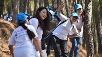Champa Devi Day Hiking, Kathmandu, Hiking & Camping