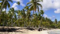 Freeport Shore Excursion: Round-Trip Beach Transfer to Taino Beach