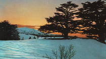 Private Tour - Qadisha Valley, Becharre, Jubran Museum & Cedars of God - Day Tour from Beirut,...